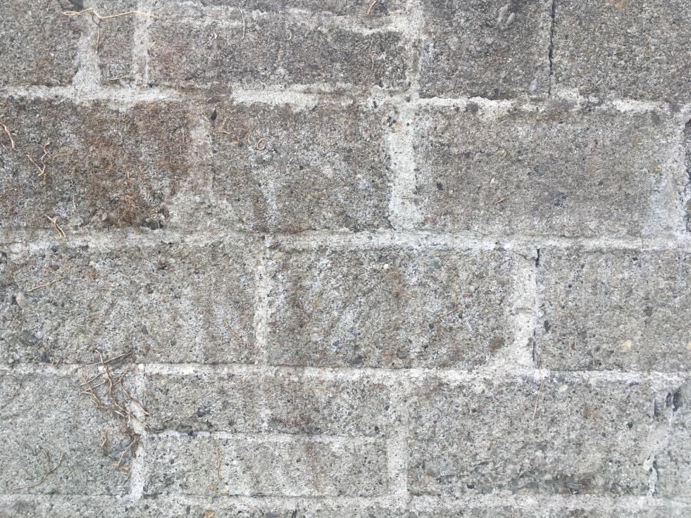 A grey, blank wall